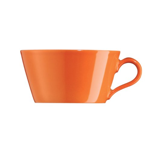 Lenox Arzberg Tric Fresh Tea Cup