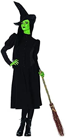 Leg Avenue Womens Wicked Elphaba Witch Costume