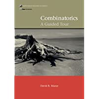 COMBINATORICS: A GUIDED TOUR