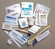 Emergency Dental Kit by Traveler's Supply