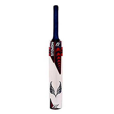 Nopeus FIGHTER (Blue Red) Popular Willow Cricket Bat, Size Full