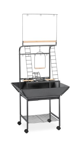 Prevue Pet Products Small Parrot Playstand 3181
