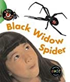 img - for Black Widow Spider (Bug Books) book / textbook / text book