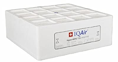 IQAir HyperHEPA Filter via Amazon