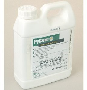 Insecticide Organic Pyganic Pyrethrin by Davids Garden Seeds
