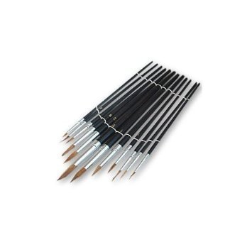 12 Piece Pointed Artist Brush Set