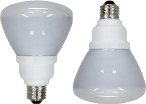 GE Lighting 72984 Energy Smart CFL  16-Watt (65-watt replacement) 750-Lumen R30 Floodlight Bulb with Medium Base, 2-Pack