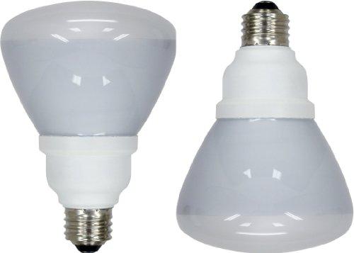 GE Lighting 72984 Energy Smart CFL  16-Watt (65-watt replacement) 750-Lumen R30 Floodlight Bulb with Medium Base, 2-Pack (Ge Light Bulbs Cfl compare prices)