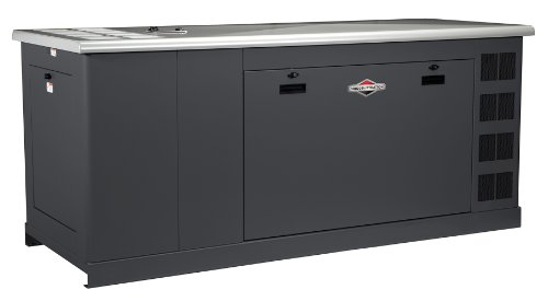 Briggs & Stratton 76160 60000-Watt Home/Commercial-Grade Standby Generator With Gm Vortec 1800 Rpm Engine