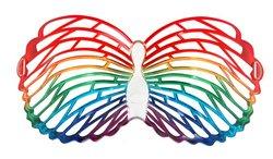 Wmu - Glasses Butterfly Louvre Rainbow