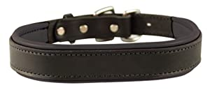 Perri's Padded Leather Dog Collar, Black/Black, X-Large