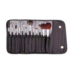 13 Piece Makeup Brush Set and