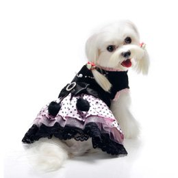 Pooch Outfitters Olivia Party Dog Dress-S at Sears.com
