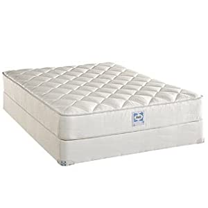 Sealy Posture Plush Mattress Set