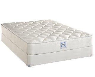 Learn More About Sealy Posture Plush Mattress Only Twin