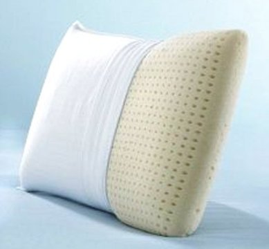 Pillowtex ® Latex Foam Queen Pillow