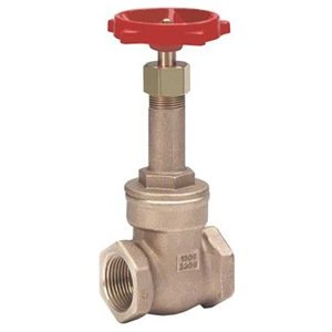 Gate Valve, Class 125, FNPT 2 1/2 In