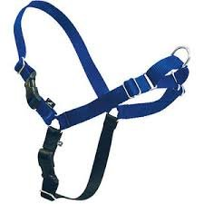 Easy Walk Harness - Medium-Large, Royal Blue Tweener