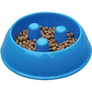 Brake-Fast Medium Dog Food Bowls