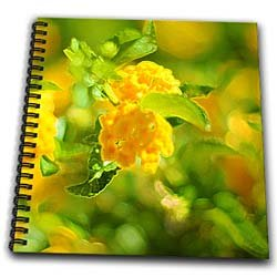 A yellow flowering plant with t he edges enhanced on green leaves - Memory Book 12 X 12 Inch