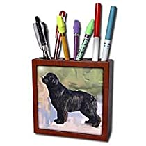 Dogs Briard - Briard - Tile Pen Holders-5 inch tile pen holder