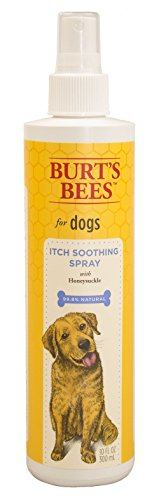 Burts Bee Itch Soothing Spray, 10-Ounce Review