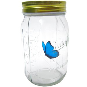 Butterfly in a Glass Jar - Blue Morpho