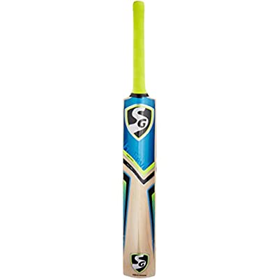 SG VS 319 Destroyer English Willow Cricket Bat