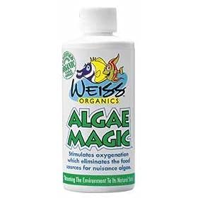 Organic Algae Magic - 16 oz.: Beauty