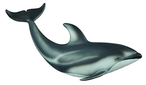 CollectA Pacific White-Sided Dolphin