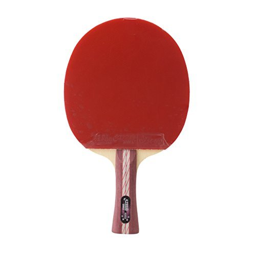 dhs-flaired-x4002-all-star-double-happiness-raqueta-de-ping-pong