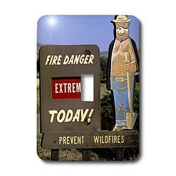 3dRose LLC lsp_89995_1 Forest Service Sign, Smokey Bear Warning, Idahom Us13 Dfr0379m David R Frazier Single Toggle Switch