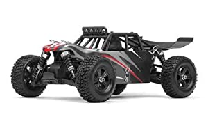 Iron Track RC Electric Barren 1/18th 4WD Desert Buggy Ready to Run (Black)