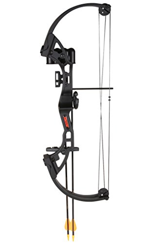 Bear Archery-Brave black w/biscuit RH (Bear Youth Bow compare prices)