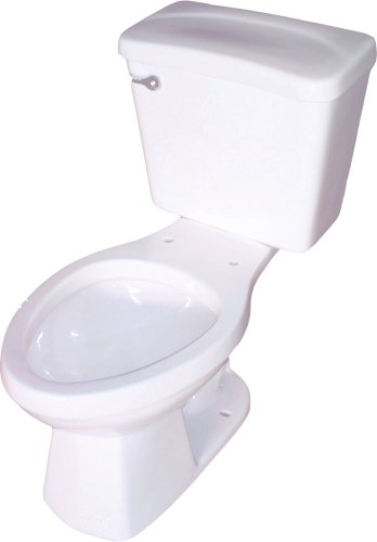 Buy Crane Plumbing SureFlush 1.6 GPF / 6.0 LPF Vitreous China Elongated Toilet Bowl #31212