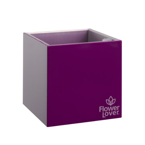 greemotion-flower-lover-cubico-616403-square-plant-pot-9-x-9-x-9-cm-purple