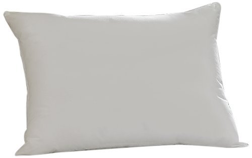 Aller-Ease Hot Water Washable Allergy Pillow, Standard, Medium by Aller-Ease (Aller Ease Hot Water Pillow compare prices)