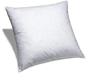 Amazon.com: Pinzon Feather And Down 26-By-26-Inch European Pillow ...