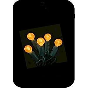 Click to read our review of Outdoor Halloween Lights: String of 70 Forever Bright G12 LED Energy Saving Orange Indoor/Outdoor Halloween Lights