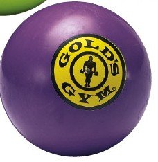 Purple - Gold's Gym Rubber Balls Dog Toys