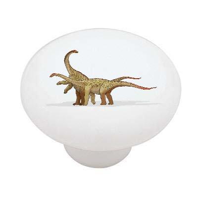 Saltasaurus Dinosaur Decorative High Gloss Ceramic Drawer Knob front-986343