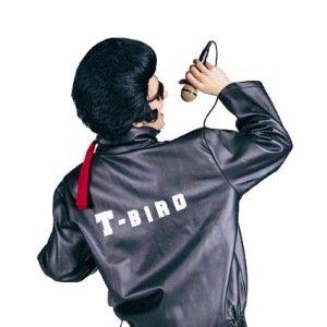 T-Bird Costume