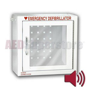 Compact Alarm (Surface Mount) Cabinet - AMP147-1SM