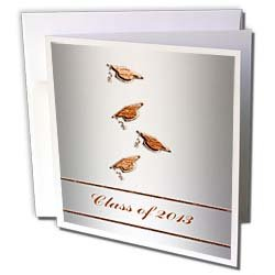 Beverly Turner Graduation Design Caps and Diplomas Class of 2013 Orange on Silver Greeting Cards 12 Greeting Cards with envelopes