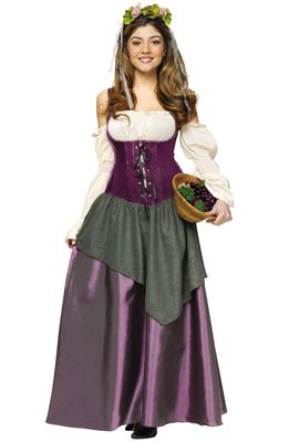 Fun World Women's Tavern Wench Costume, Multi, Large