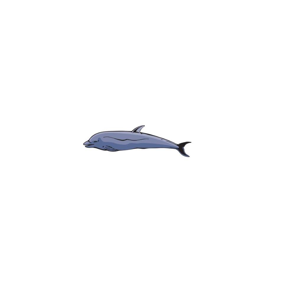 Dolphin Animal Amimals Car Truck Vehicle Bumper Helmet Decal Sticker Wall Art Laptop Phone Design Skin Stickers