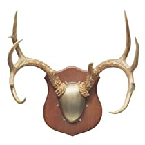 Flambeau Premium Antler Mounting Kit (Metal)