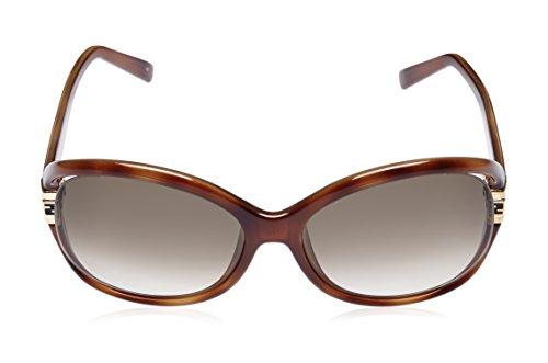 Fendi Fendi Round Sunglasses (Demi Brown) (FS 5152|218|59) (Multicolor)