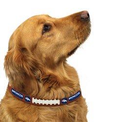 Denver Broncos Official NFL Medium Pet Dog Collar by Gamewear