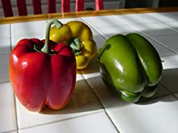 Artificial Large Assorted Bell Pepper, Box of 6
